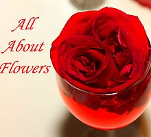 All About Flowers by ZeeZeeshots