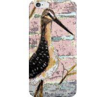 BC birds series-1 iPhone Case/Skin