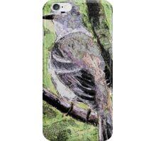 BC birds series-4 iPhone Case/Skin