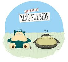 King size beds by sovlful