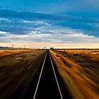 Trans Siberian Train Lines by patchkc