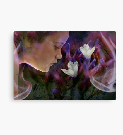 Dreaming in Colour Canvas Print