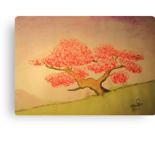 Lonely Cherry Tree Canvas Print