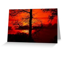 sunsetting behind an old leafless oaktree Greeting Card