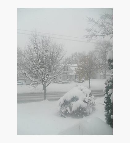 OMG! Out my front window! Photographic Print