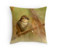House Sparrow on Russian Olive Throw Pillow