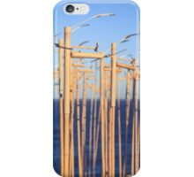 SCULPTURES BY THE SEA BONDI BEACH iPhone Case/Skin