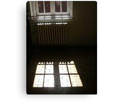 The window... Canvas Print