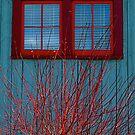 Blue Barn by Jeannette Sheehy