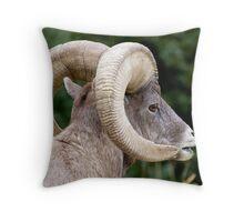 Famous Bighorn Ram Throw Pillow