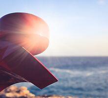SCULPTURES BY THE SEA BONDI BEACH #9 by megandunn