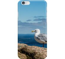 Seagull on Mountain iPhone Case/Skin