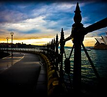 Opera by the fence by David Petranker