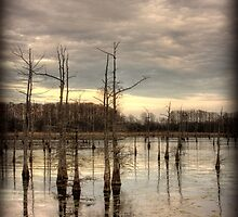 Winter's End by steini