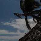 Doreen's Dominican Tree by Barbara Gerstner