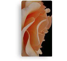 brandy undulations Canvas Print