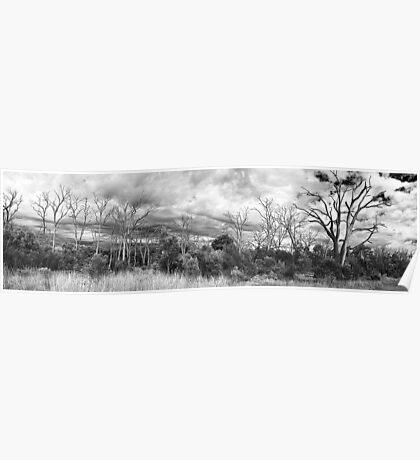 Untilted Landscape Poster