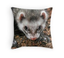 Farken the Ferret Throw Pillow