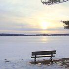 Winter I by paulineca