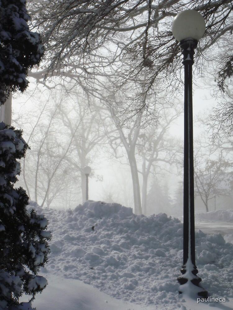 Winter Wonderland by paulineca