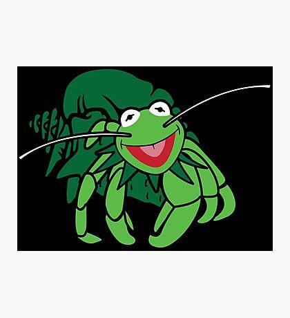 Hermit the Crab Photographic Print