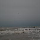 Ocean by Cheyenne