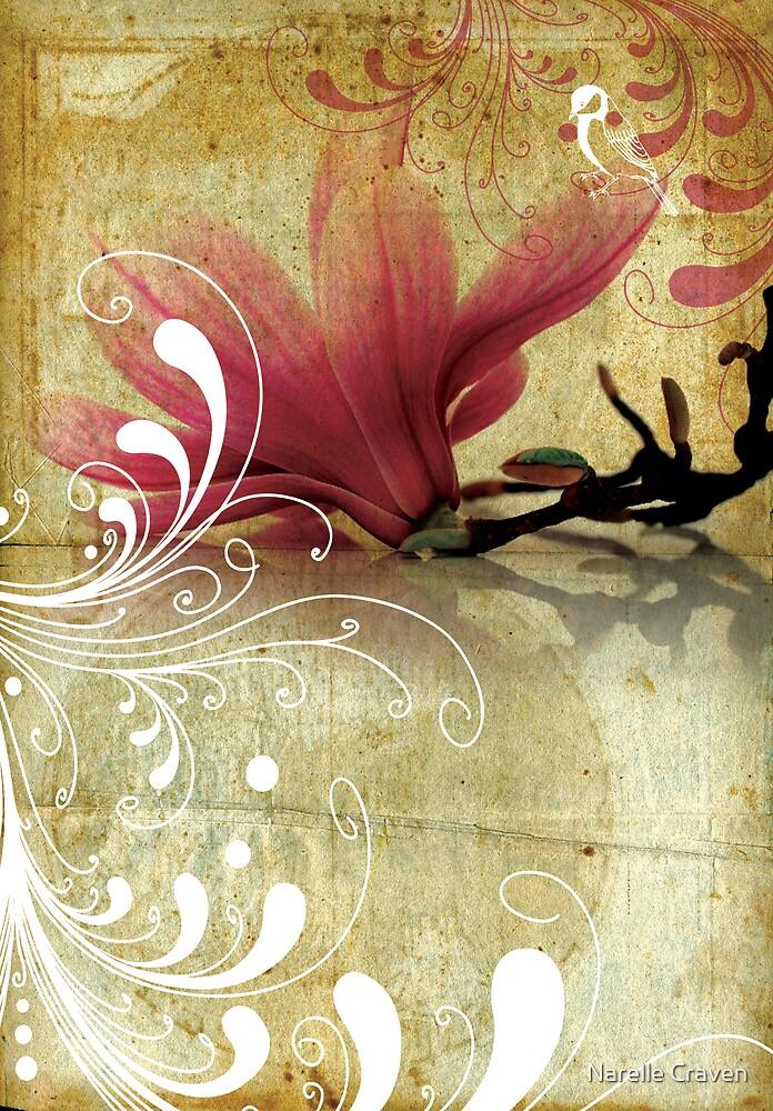 magnolia by Narelle Craven