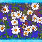 Daisy Field by Kenneth Hoffman