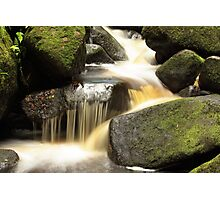 Padley Gorge, Derbyshire Photographic Print