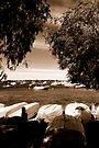 Boat Scene by Richard Owen