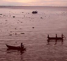 Early Morning on the Tonle Sap by justineb