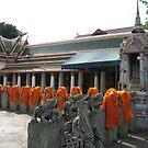 Kasaya Off the Backs of Buddhist Bhikkhu by M-EK