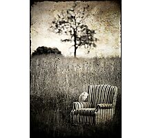 Portrait Of A Chair Photographic Print