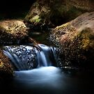 Jenolan River by Mark Moskvitch