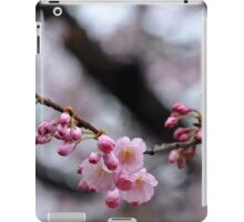 Spring - Nature's Gift, LIfe's Promise iPad Case/Skin