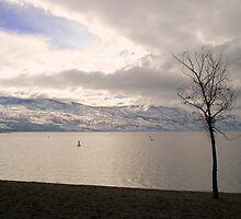 Okanagan Mountain Park by Gregory Ewanowich