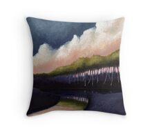 Stillwater Convergence Throw Pillow