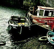 Skerries, Co Dublin, Ireland by Janine Branigan