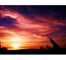 amazing skylight among us Photographic Print
