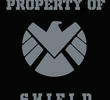 Property of SHIELD by withbuckybarnes