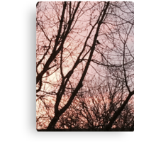 Only One Bird Canvas Print