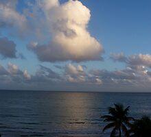 Isle Verde, PR, Thw Water Club and Beach Hotel by EMElman