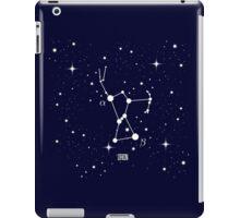 Orion Constellation iPad Case/Skin