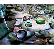 Shell Nacre Photographic Print