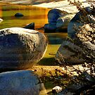 Sand Harbor Shoreline by Elaine Bawden