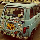 Sticker Bug by AuroraImages