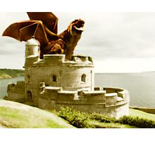 **Smaug** Photographic Print