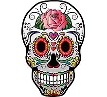 Sugar Skull w/no background 4 Photographic Print
