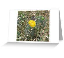 Yellow Prickly Pear Cactus Greeting Card
