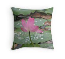 Mareeba Wetlands Lily ... Throw Pillow